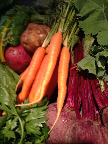 community supported agriculture, CSA, fresh produce